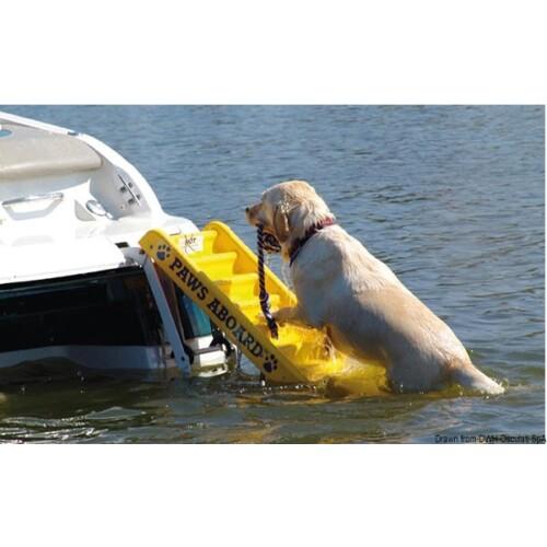 Úszó létra kutyáknak OSC